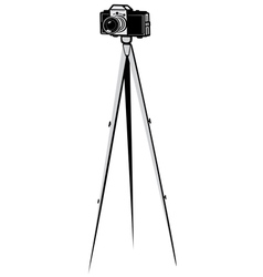 Camera on a tripod vector