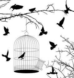 Birds and cage silhouettes vector