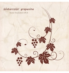 Grape vine with grunge paper texture background vector
