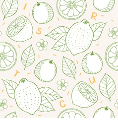 Citrus seamless pattern vector