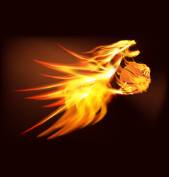 Fire dragon with a basketball vector