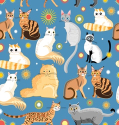 Graphic pattern different breeds of cats vector