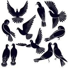 Silhouettes of pigeons that fly and sit vector