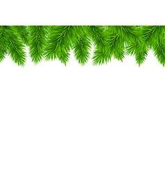 Fir tree border vector