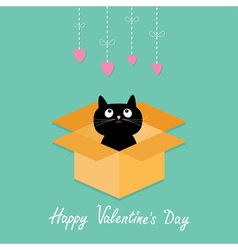 Cat inside opened cardboard package box valentines vector