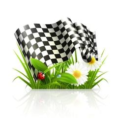 Checkered flag in grass vector