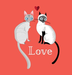 Cats in love vector