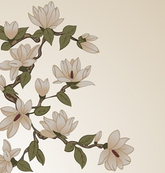 Background with flowers on tree vector