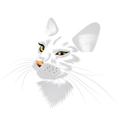 White cat with yellow eyes vector