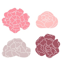 Peony pastel flower set isolated on white vector