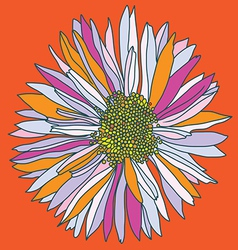 Orange camomile print vector
