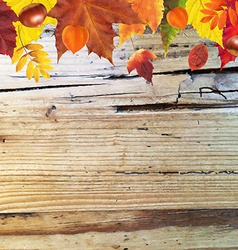 Autumn border with wooden background vector