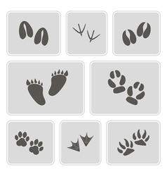 Icons with traces of animals and birds vector