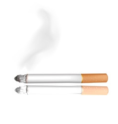 Cigarette white background vector