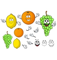 Happy cartoon grape lemon and orange fruits vector