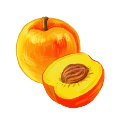 Picture of peaches vector