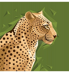 Portrait of a leopard on abstract background vector