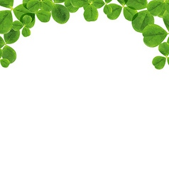 Border with leaves vector