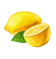 Picture of lemon vector