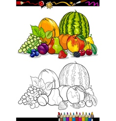 Fruits group for coloring book vector