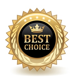 Best choice badge vector