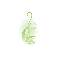 Green plant for design vector