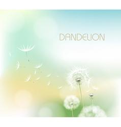 Abstract flower dandelion vector