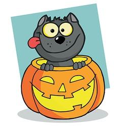 Happy cat in a pumpkin vector