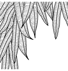 Abstract natural background with long leaves vector