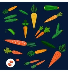 Healthy carrot and cucumber flat vegetables vector