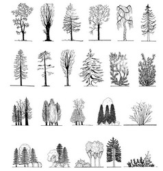 A set of tree silhouettes vector
