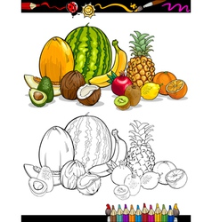 Tropical fruits group for coloring book vector