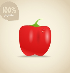 Cute fresh red paprica vector