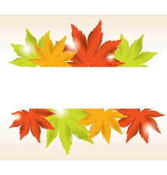 Abstract background of maple leaves vector