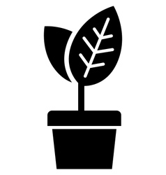 Young plant in pot vector