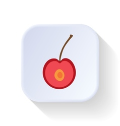 Cherry fruit vector