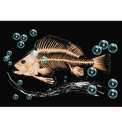 Fish skeleton and bubbles vector