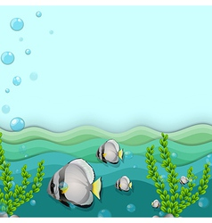 A school of fishes underwater vector