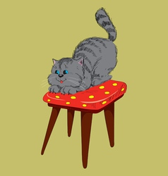 Cat on a chair vector