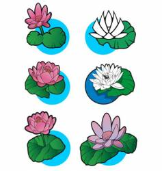 Lotus flower set vector