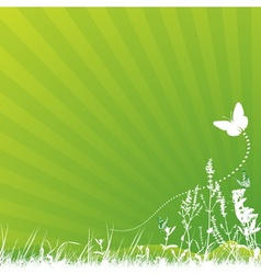 Butterfly and meadow vector