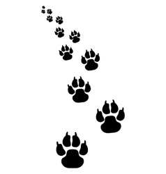 Footprints of dogs 4 vector