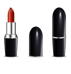 Red lipstick in black case isolated on white vector