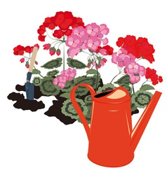Flowers and watering can vector