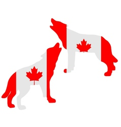 Canadian howling wolves vector