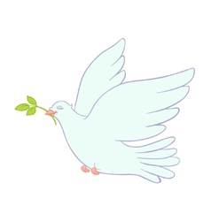 Dove of peace on white background vector
