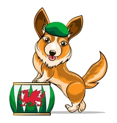 Corgi and drum vector
