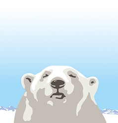 White bear vector