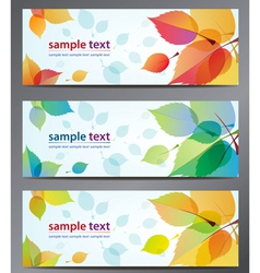 Autumn leaves background brochure vector
