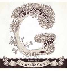 Fable forest hand drawn by a vintage font - g vector